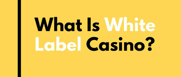 White lable casino